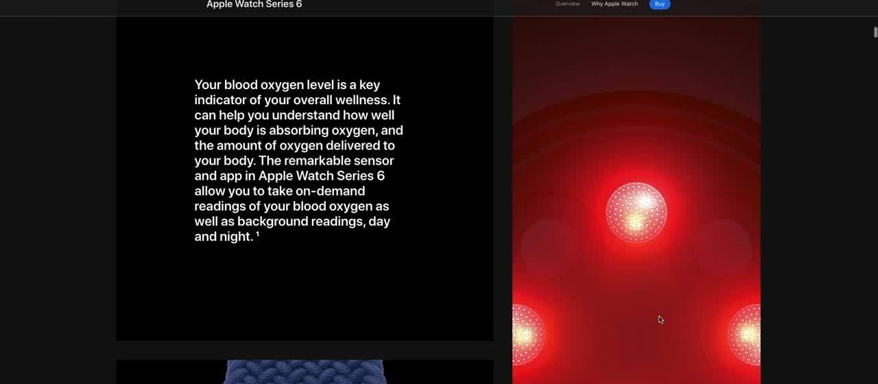 Apple watch information