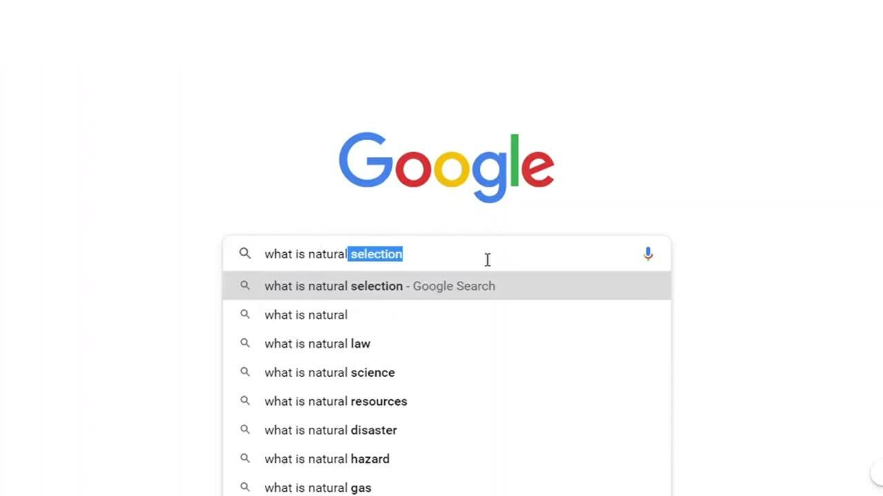 Google search_What is NLP