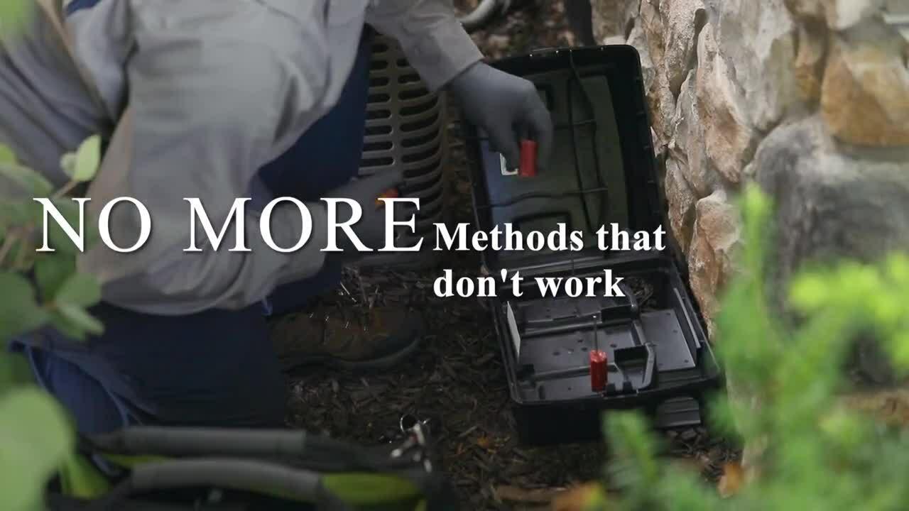 JT-quarterly pest control