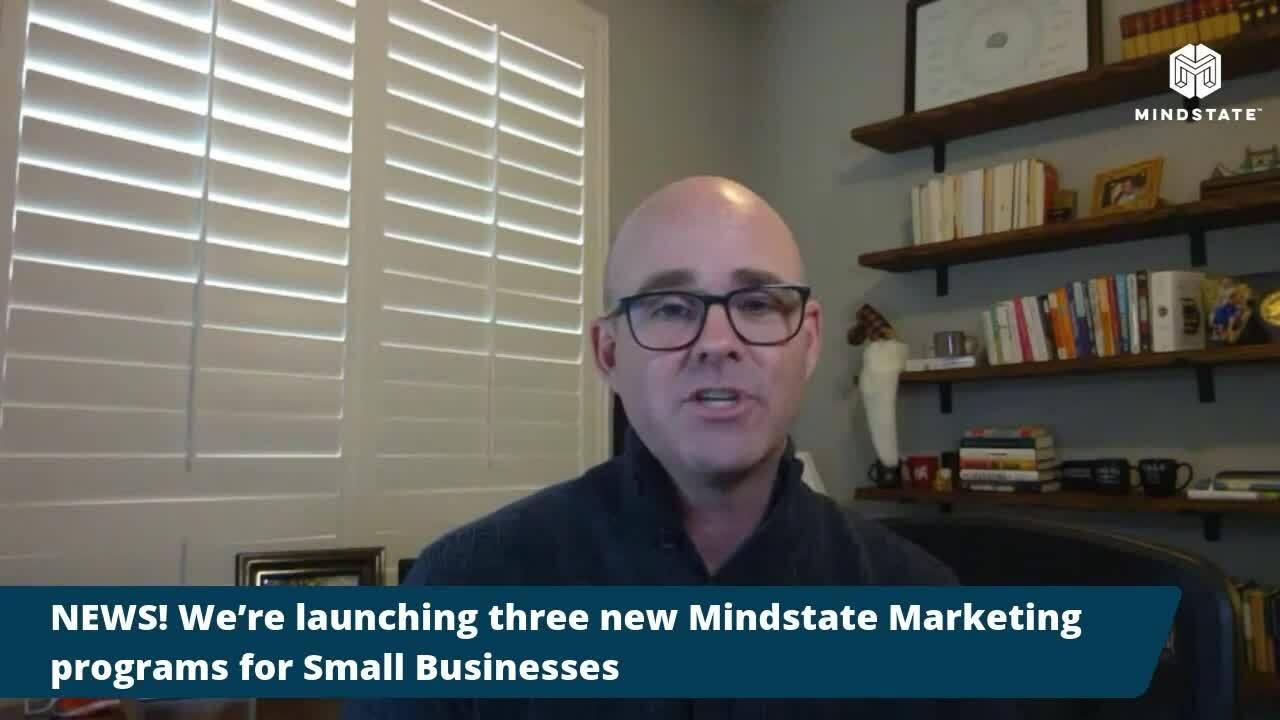 mimicblogvideo7-vs2-mindstategroup
