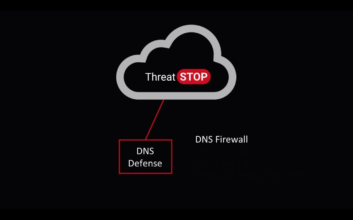 TS Detailed DNS Defense Video