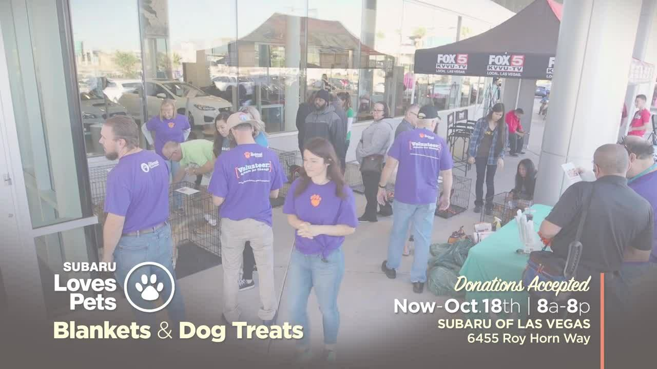 Subaru Loves Pets 2019 Friday