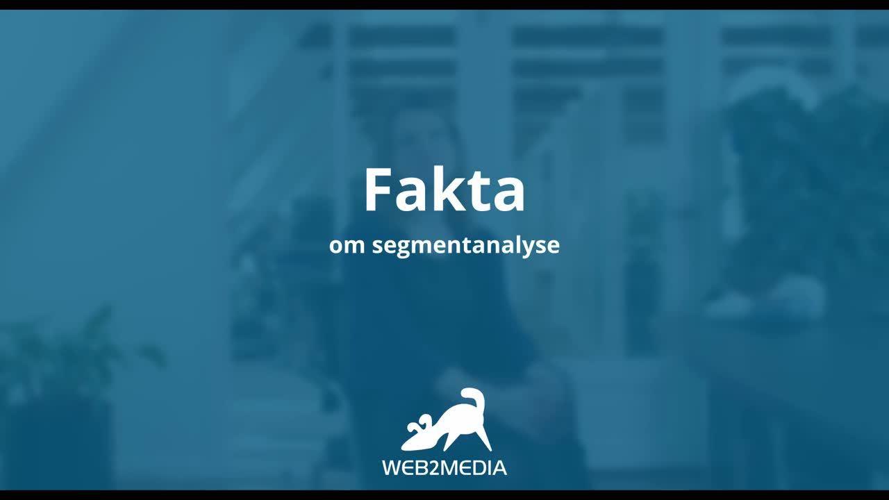 Segmenteringsanalyse-teaser-fuld-version-undertekster