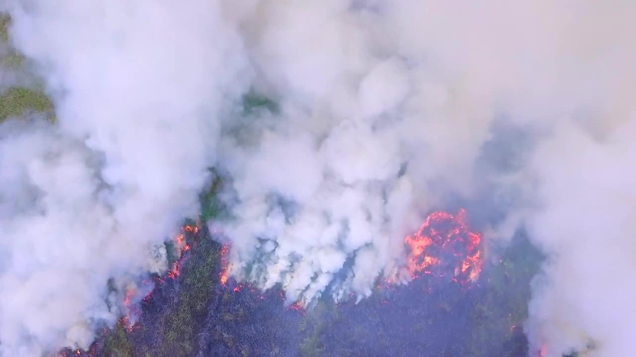 wildfirefootage