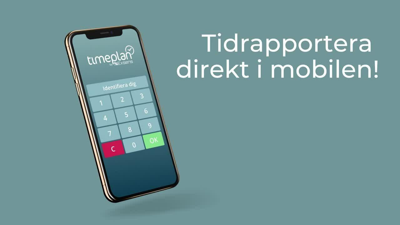 Tidrapport i Timeplan-1