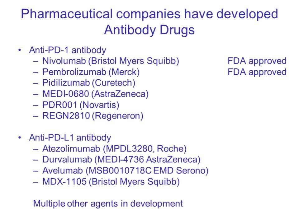 Targeting Cancer Pathways_ Understanding Immune Checkpoints