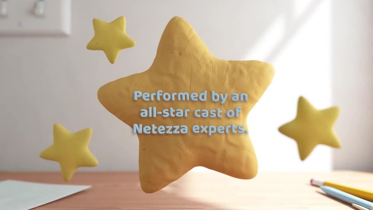 natrinsic-netezza-service