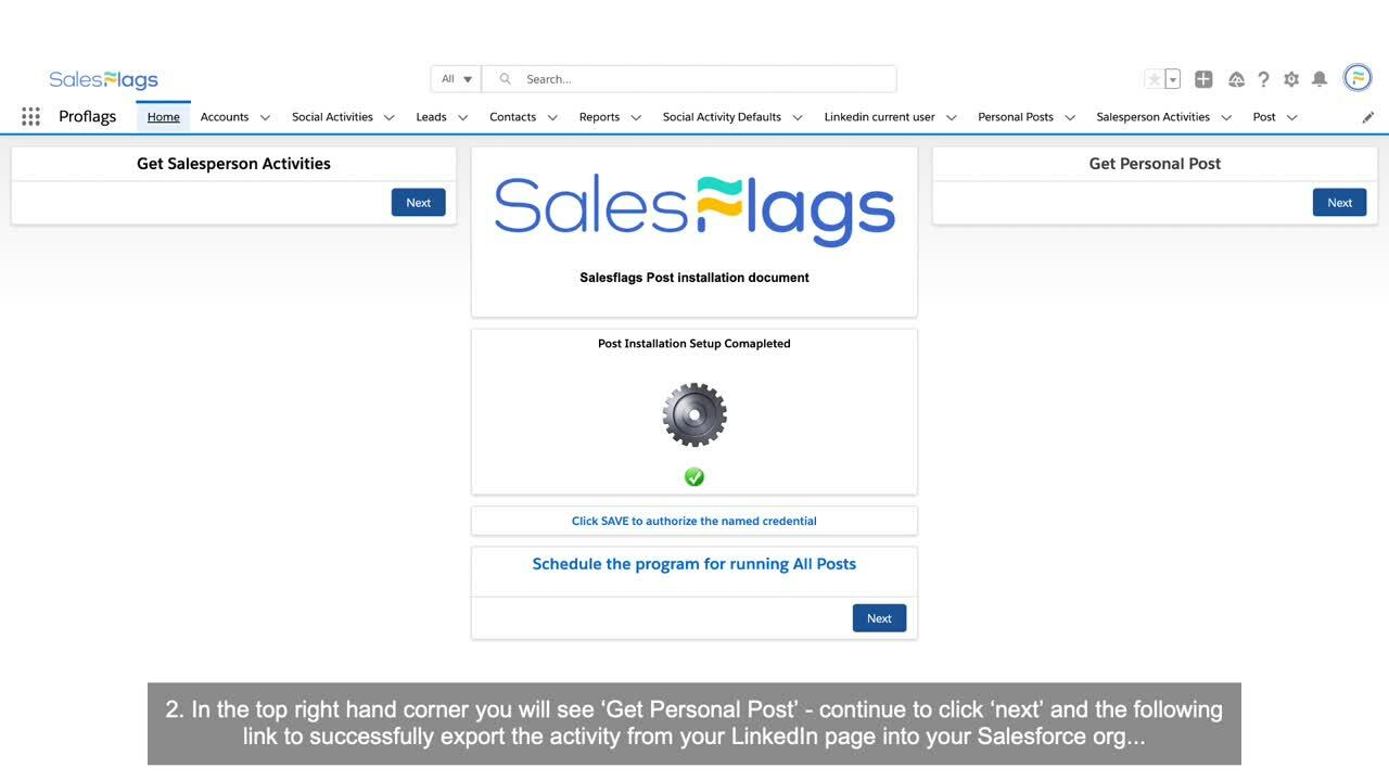 Salesflags Training Guide - Personal Posts-1