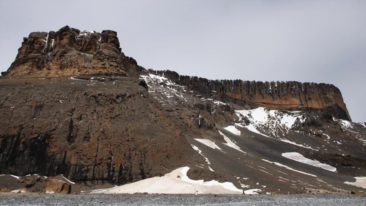 Antarctica 2019 - Brown Bluff