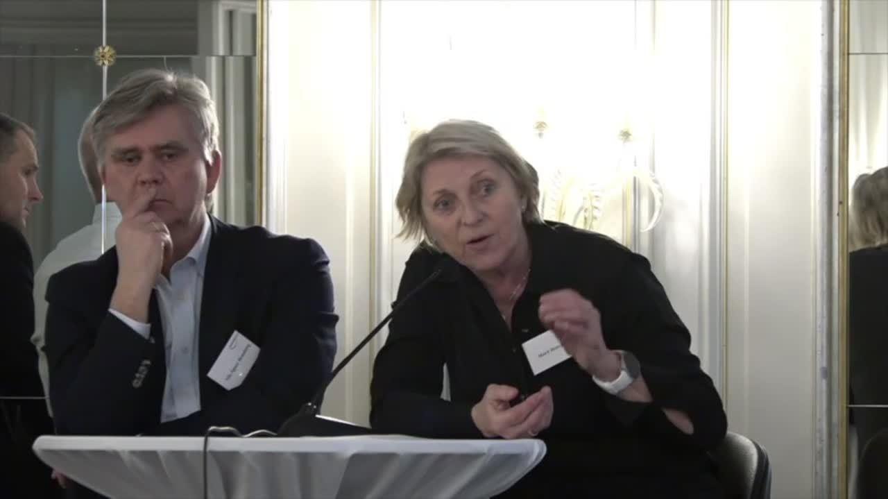 Interimdagen 2020 - 8 Paneldebatt 720p-1