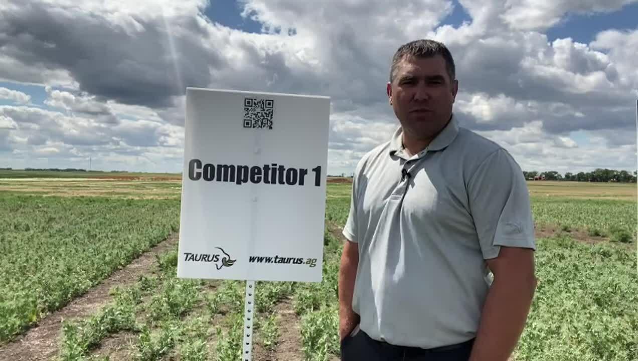 AIM 2021  DF competitor 1- plot 2