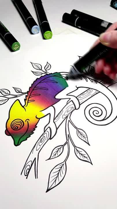 Drawing Rainbow Chameleon Animal Kate Mur