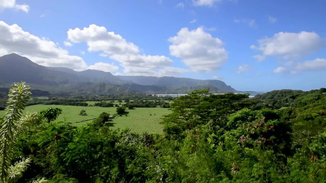 Exotic_Real_Estate_Kauai_30 2.0 - Final - Main Spot - HD1080P
