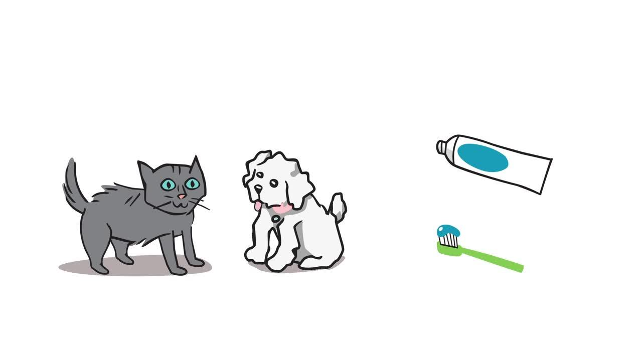 0049A-oral-health-dogs-and-cats-BFVC01-200102