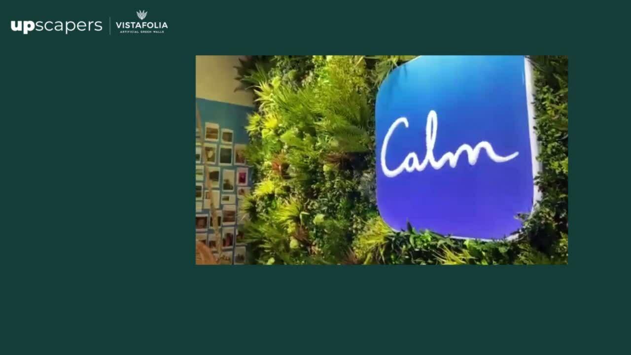 Calm San Francisco_HD