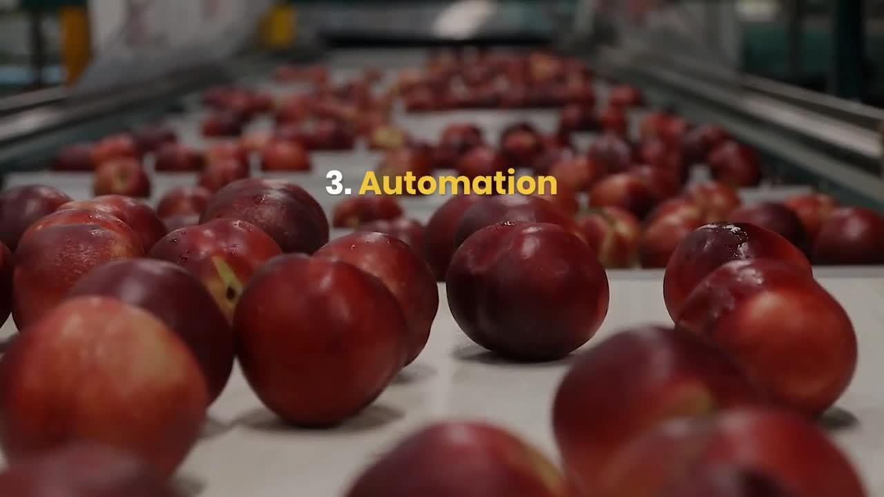 Optimizing_Food_Production_and_Manufacturing