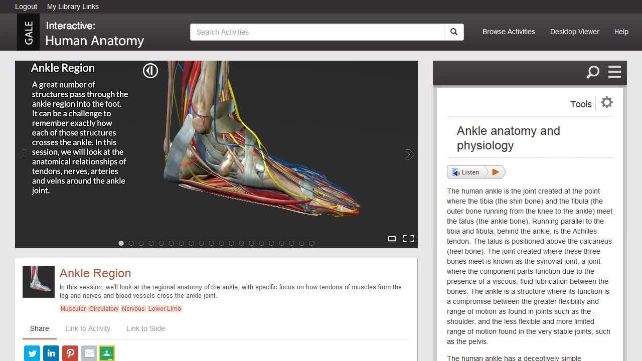 Gale Interactive: Human Anatomy - Activities Thumbnail