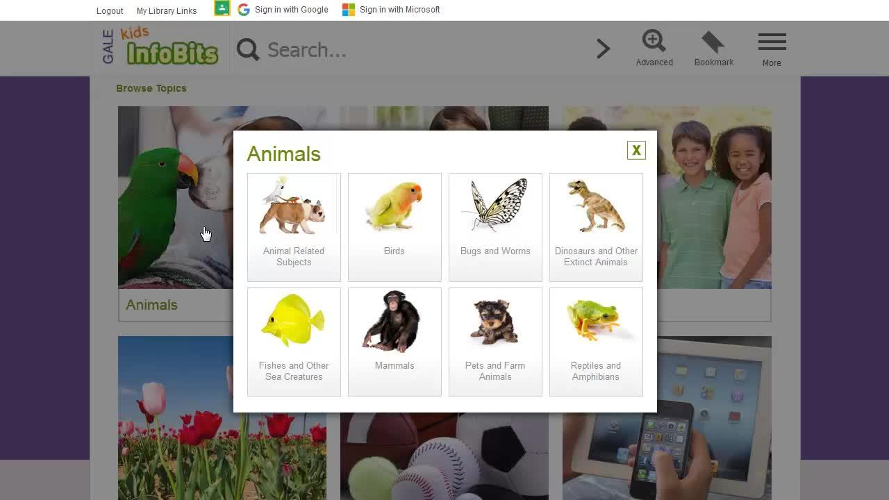 Kids InfoBits - Basics Thumbnail