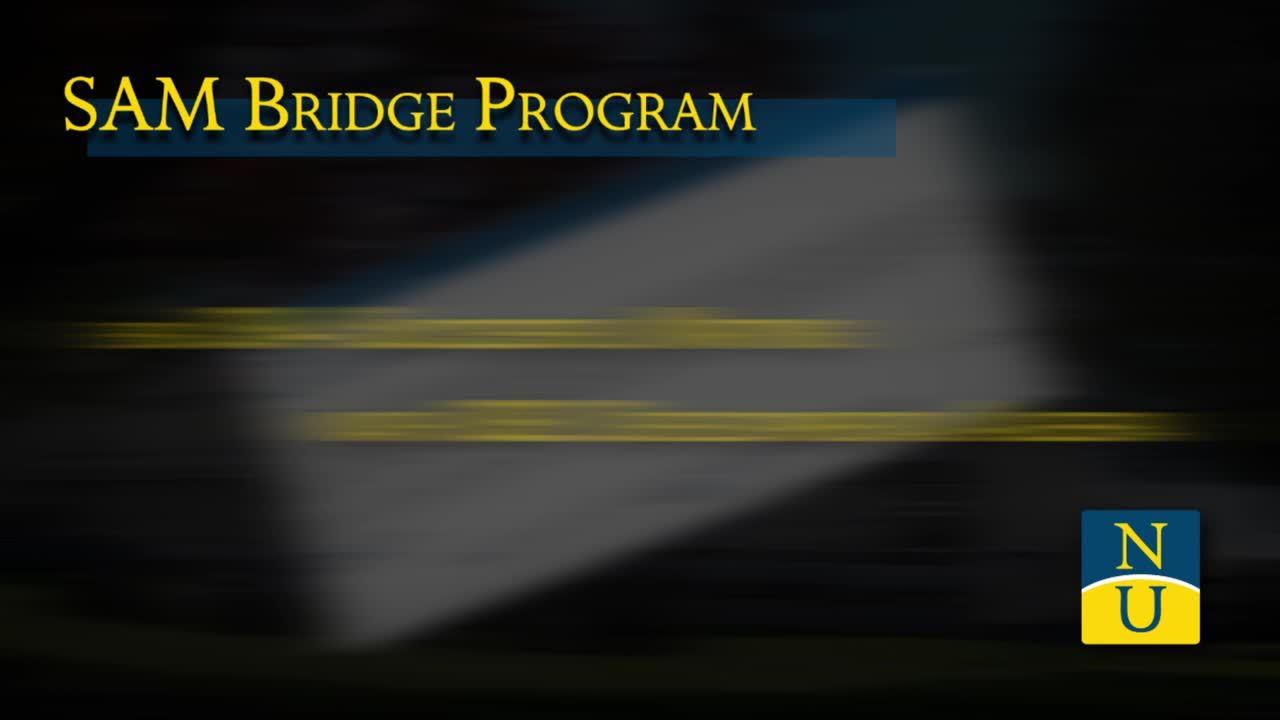 Online Summer Bridge
