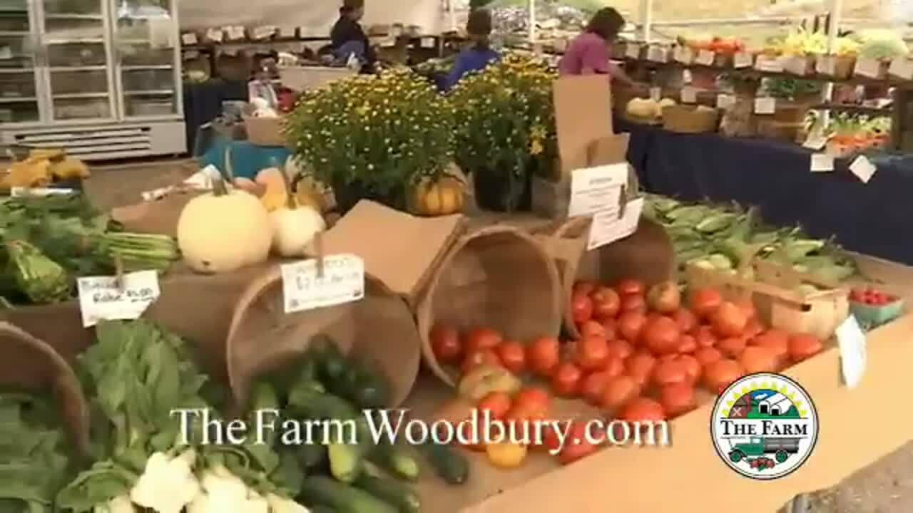 The Farm Woodbury 30 Corn Maze V4_1000Kbps_360p