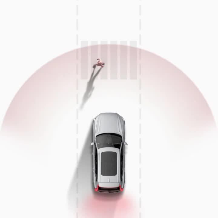 LP. 6 safety-driver-assist-1x1-video
