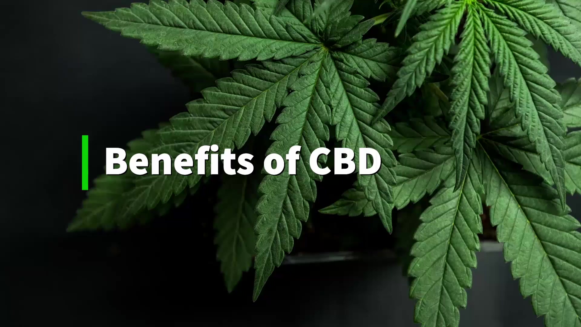 Benefits of CBD Oil That Are Rarely Talked About!