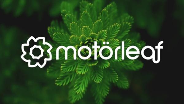 Motorleaf victor interview V4 FINAL compressed