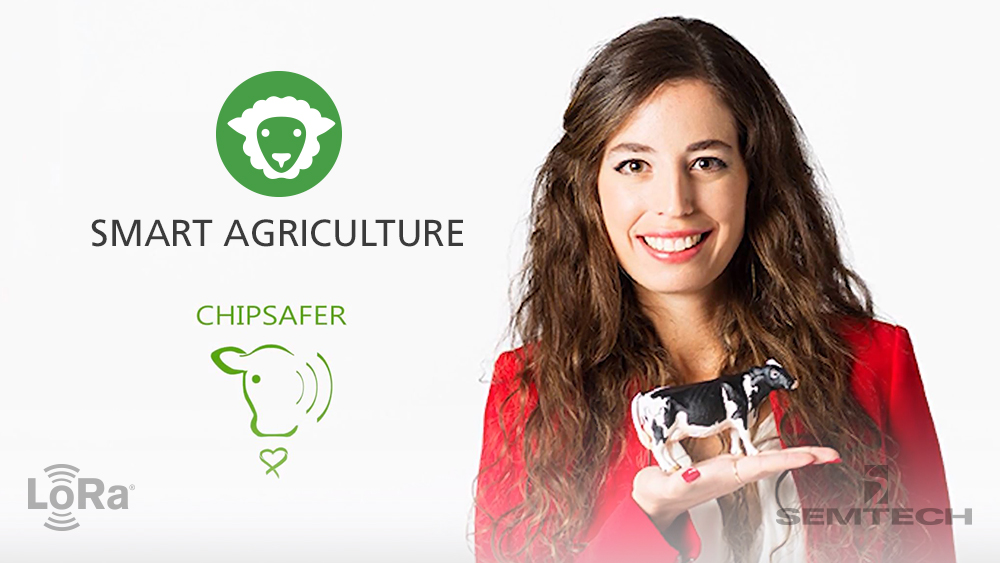 Semtech LoRa® Use Case: Chipsafer Cattle Tracking