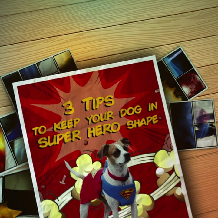 Parnell Glyde_V1_HD 720p_3 Tips to Keep Your Dog in Superhero Shape