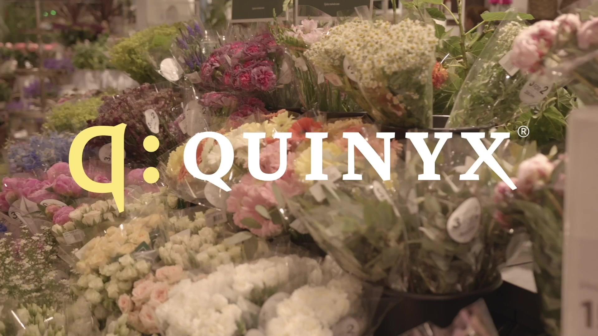 Quinyx_Børke&Tangen(Mester_Grønn)_1.5_subtitled