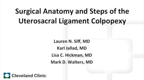 Surgical Anatomy And Steps Of The Uterosacral Ligament Colpopexy
