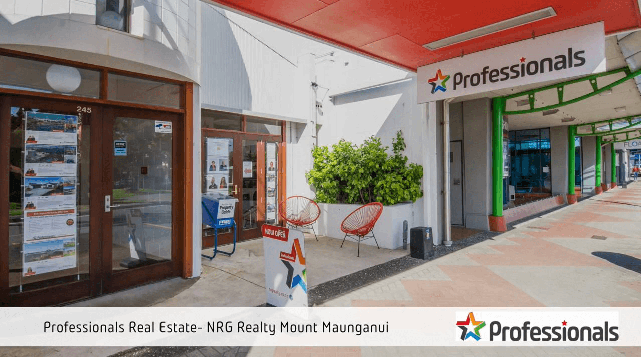 Professionals NRG Realty - Mount office profile video