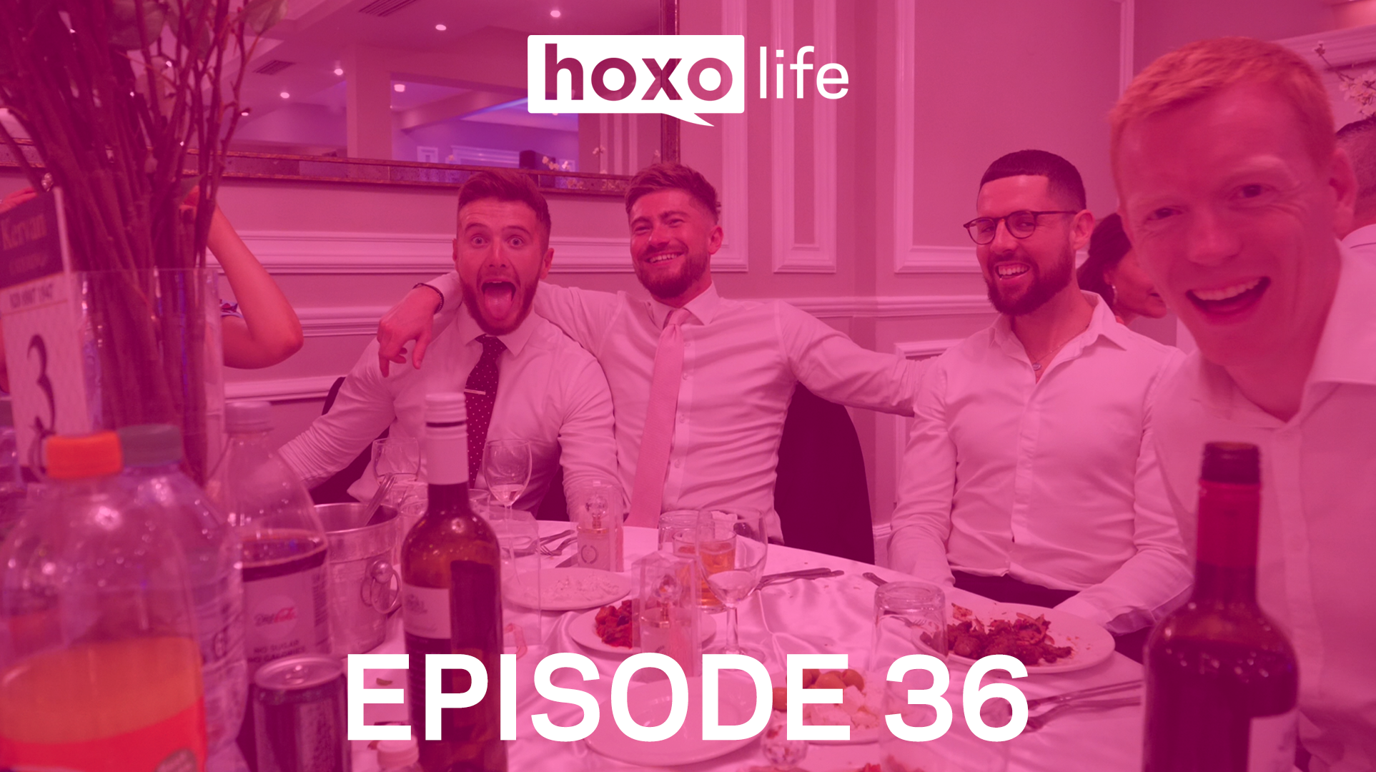 Hoxo Life 36 - Chat with Sean