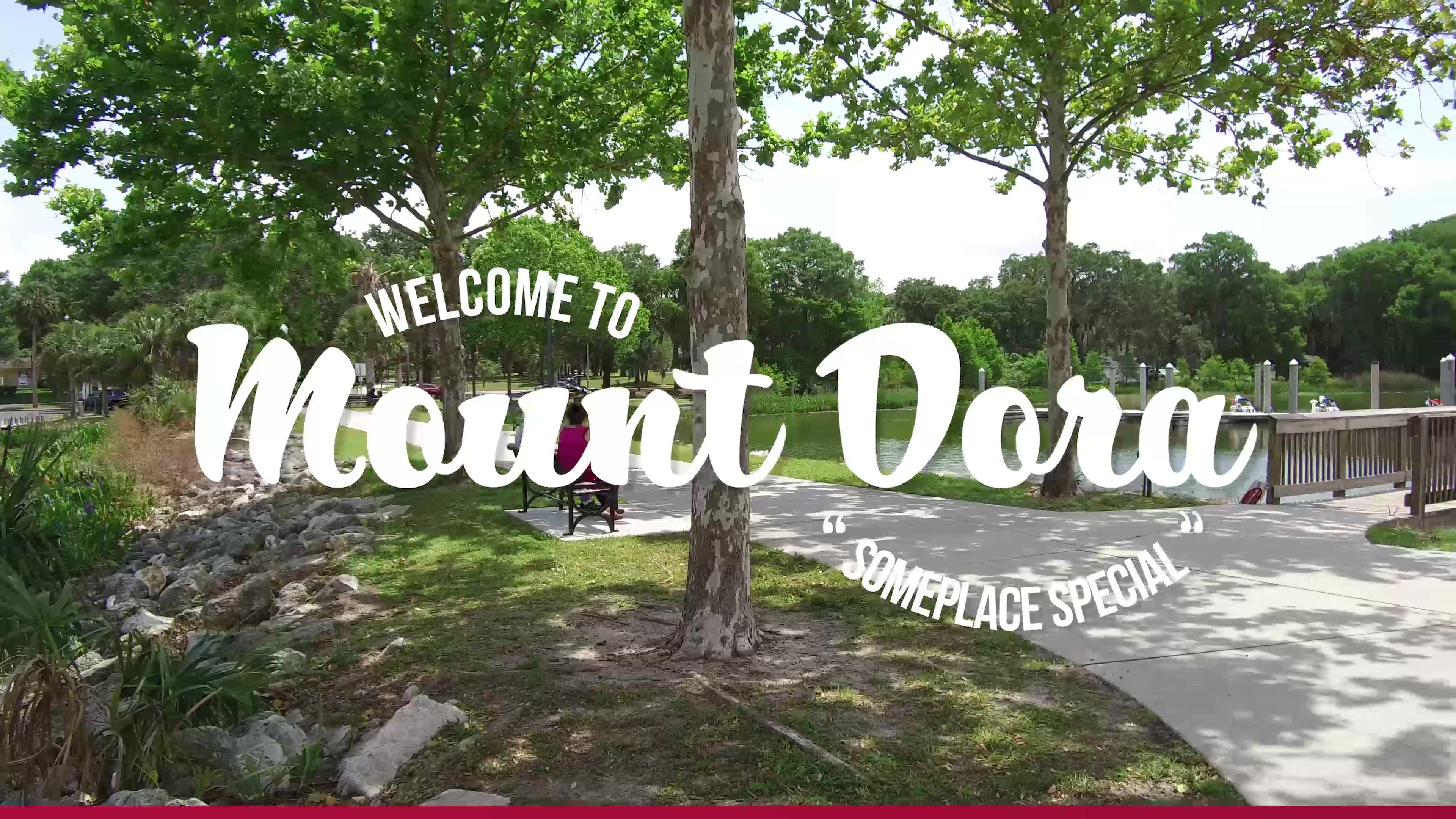 Call Mount Dora Home