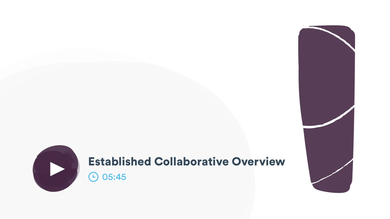 Established Collaborative Overview