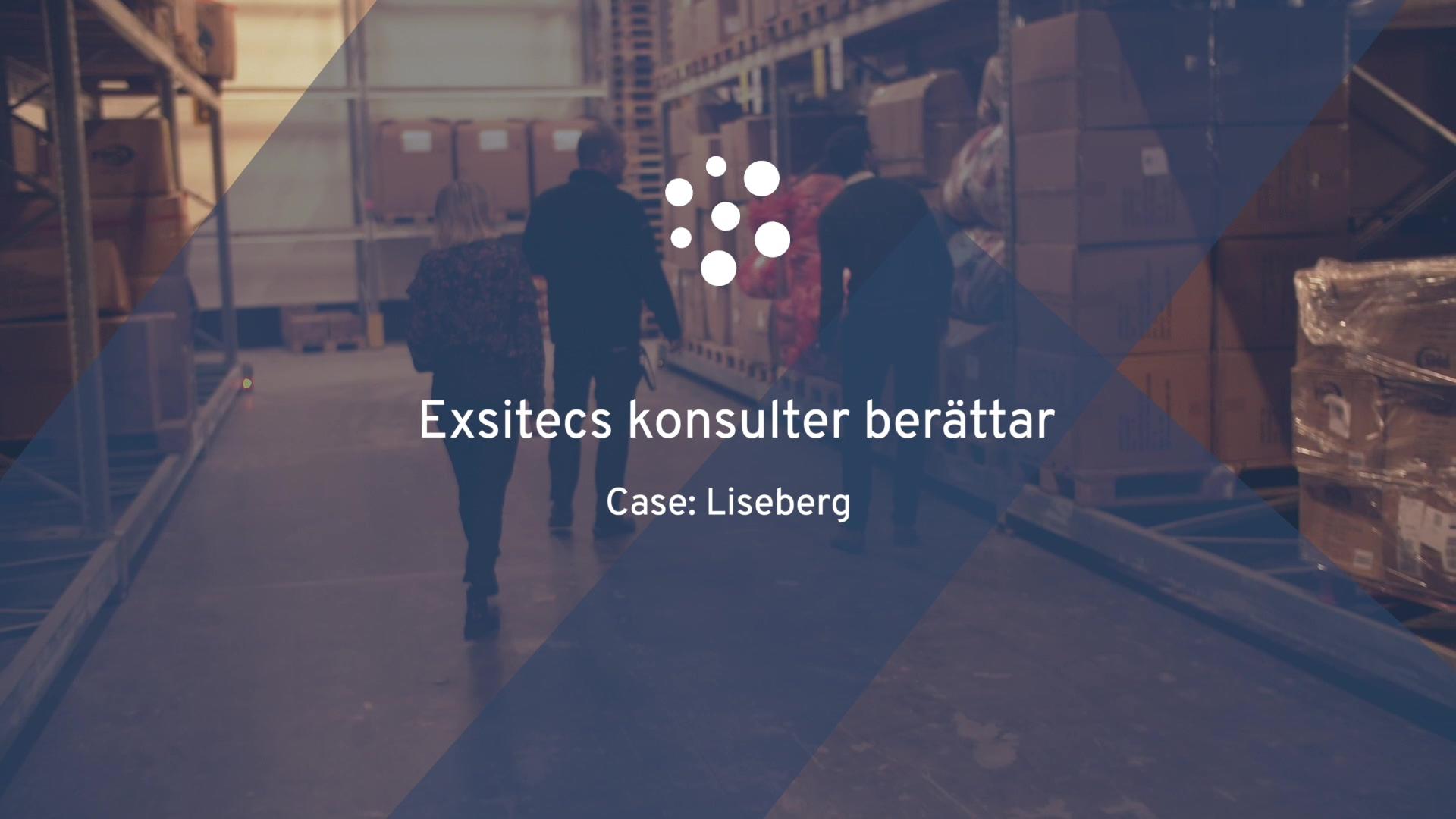 Exsitec Liseberg - Exsitecs konsulter