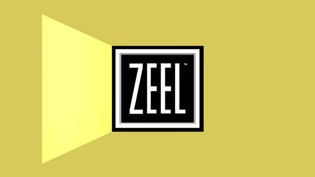 201911_ODL_ZEEL_Final