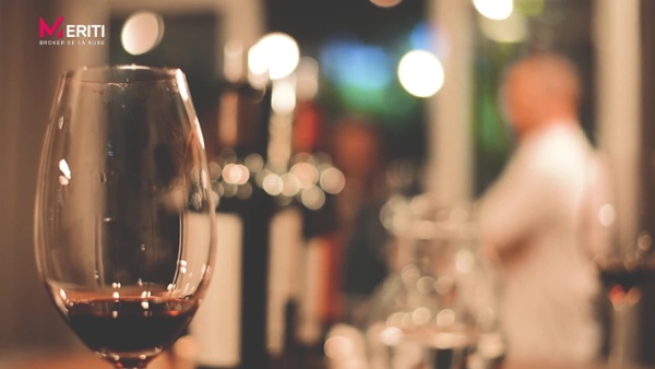 TEASER - Degustación de Vinos - MERITI