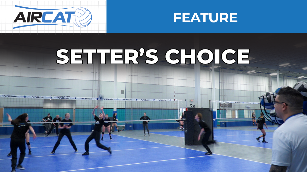 Setters Choice - YT