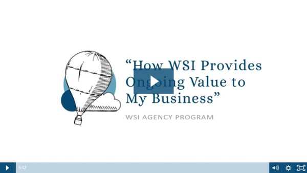 """How WSI Provides Ongoing Value to My Business"""