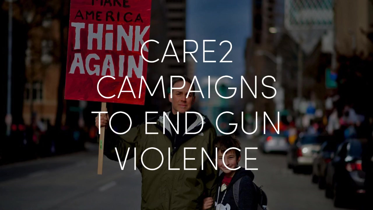 Care2_Campaigns_Against_Gun_Violence