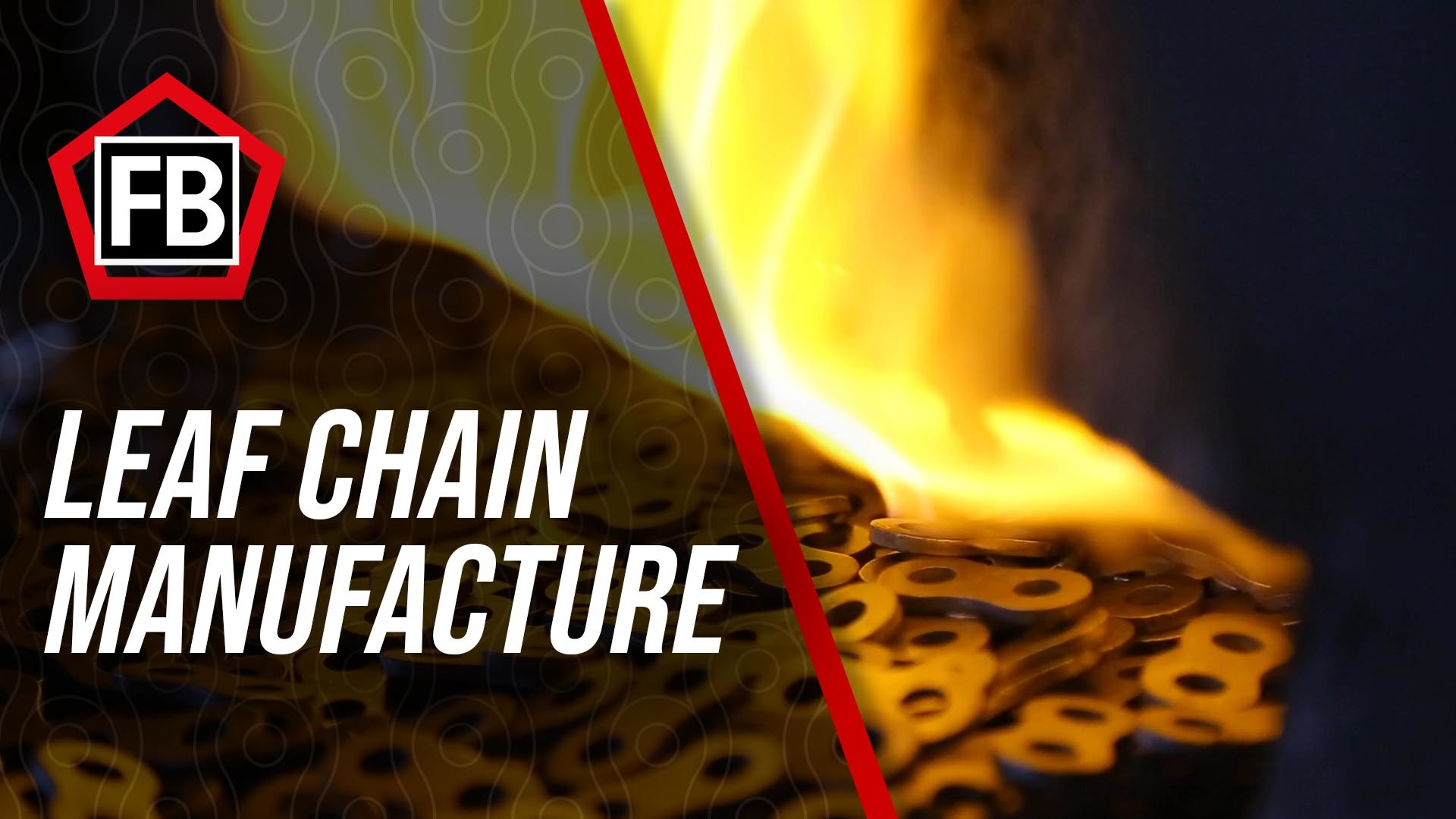 FBC Leaf Chain Manufacture 2.1