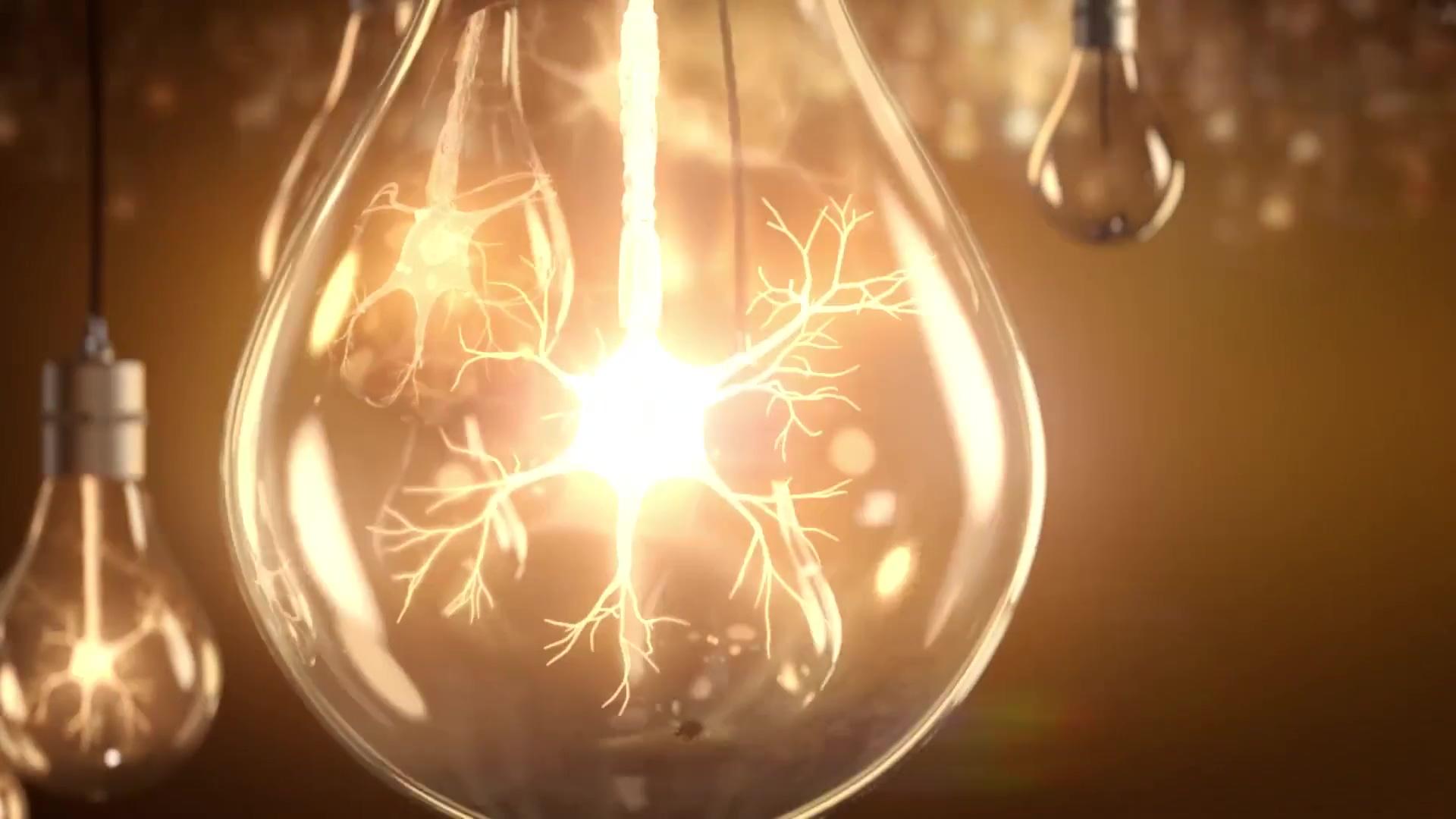 Roche Lightbulbs