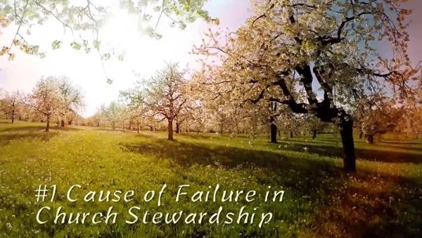Cause of Failure in Stewardship