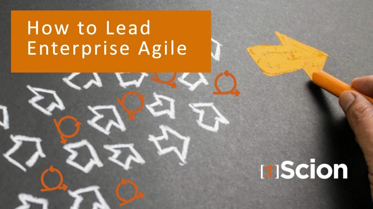 Agile Leadership Webinar edits