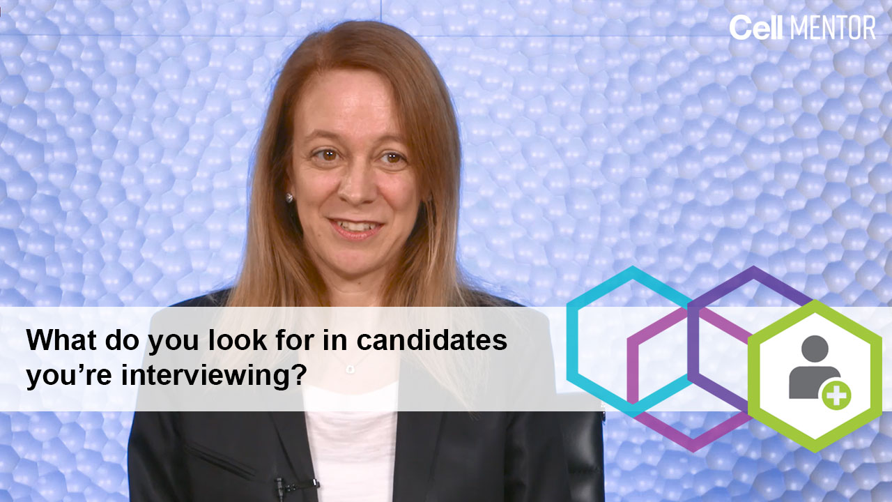 Get Hired - What do you look for in candidates you're interviewing