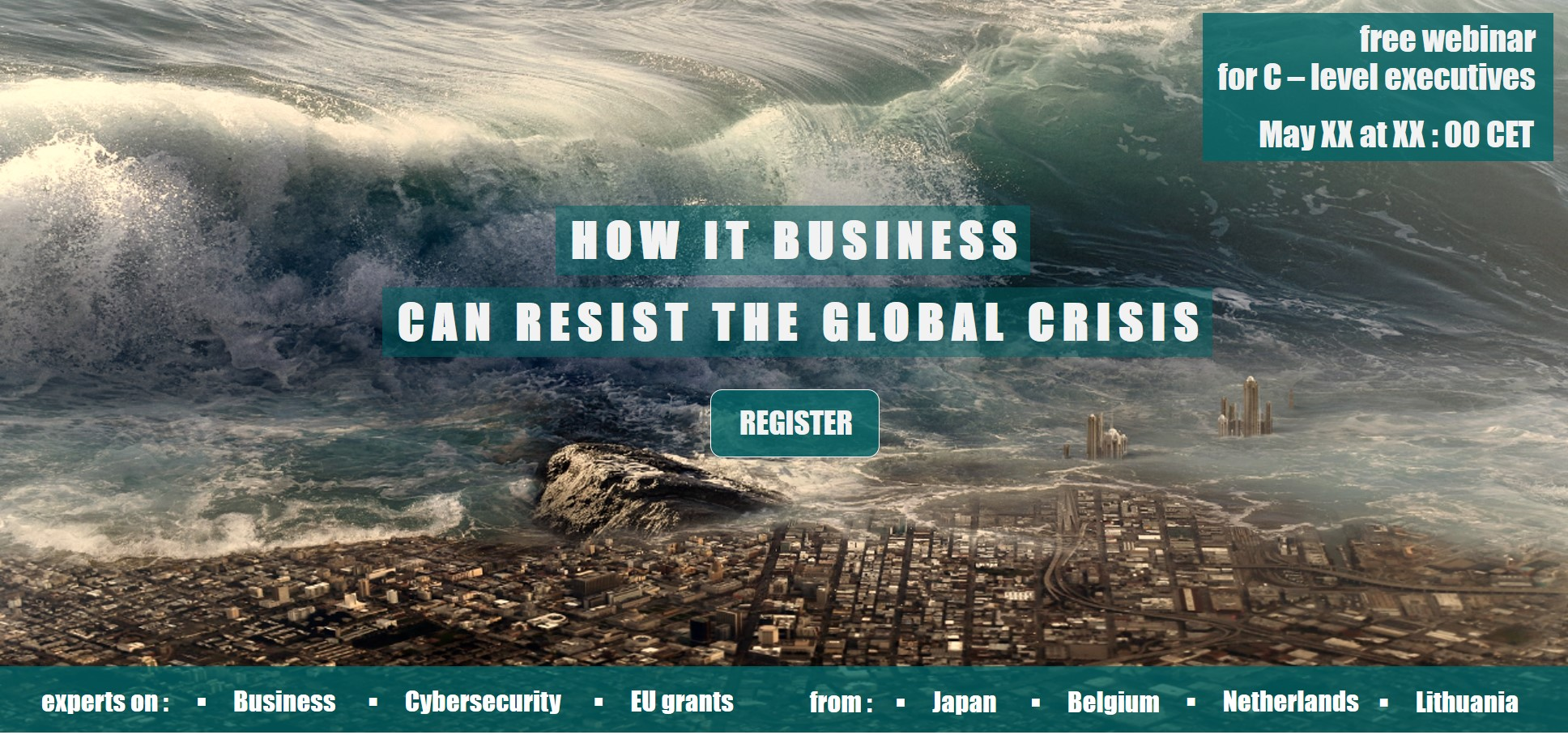 Webinar - How IT Business can resist the global crisis