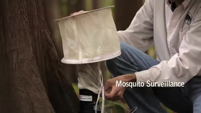 Integrated Mosquito Management - On Land And In The Air (VDCI) - SV