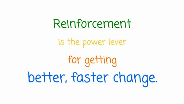 Change Management Solutions- Developing a Reinforcement Strategy Using AIM-1