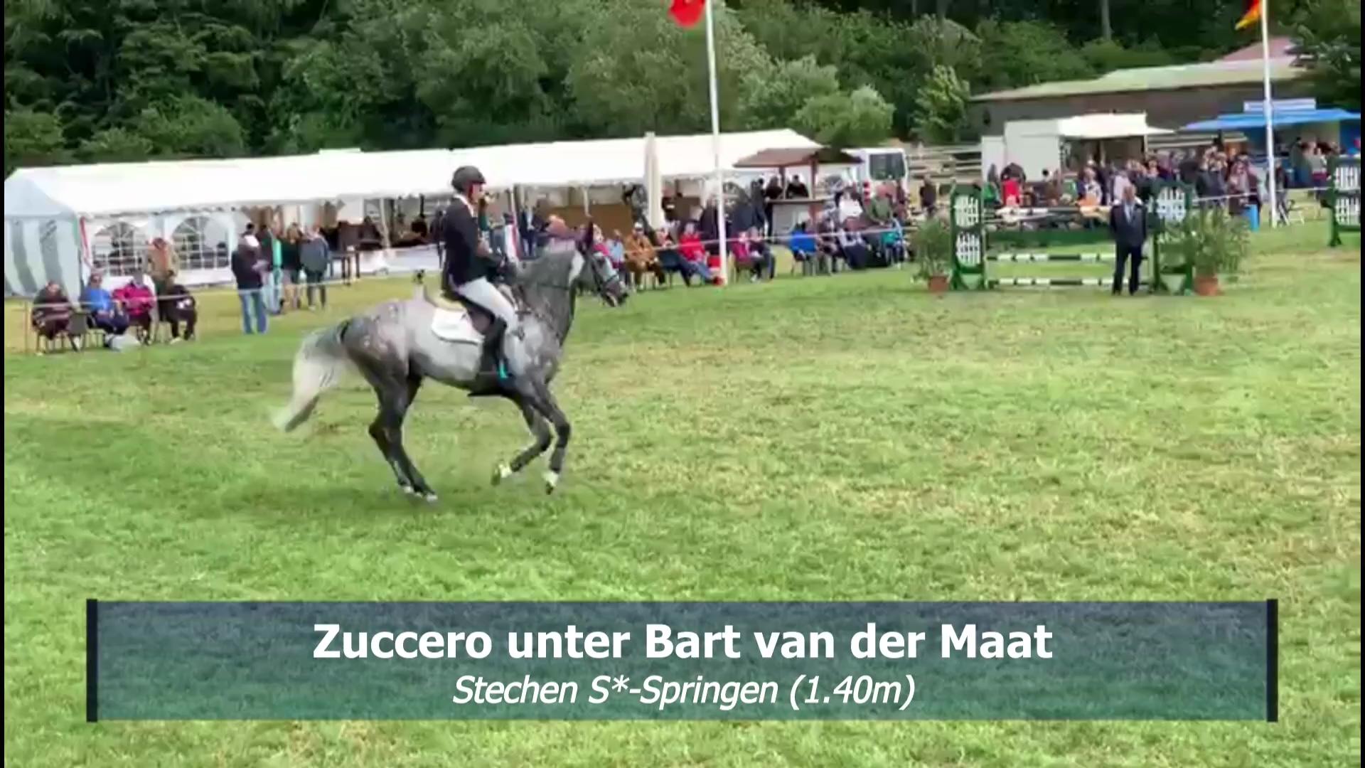 Zuccero_Hademarschen